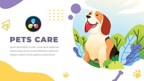 Pets Care and Veterinarian | DaVinci Resolve