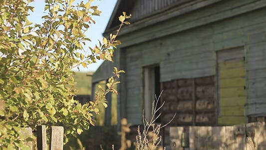 Thumbnail for Green Leaves And Abandoned Village House 2