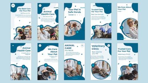 Animal Health Care Instagram story