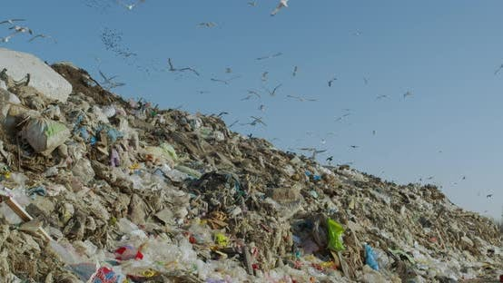 Thumbnail for Big Piles of Garbage. Empty Bottles, Plastic in the Waste Dump.