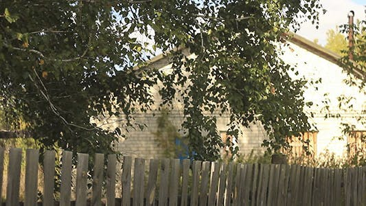 Thumbnail for Wooden Fence Under Branch Tree And Building