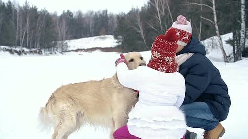 Petting an Obedient Dog