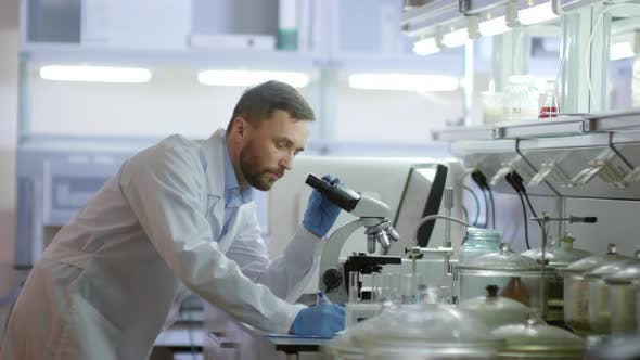 Thumbnail for Researcher Using Microscope in Lab