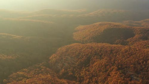 Flight Over A Wooded Area In The Autumn Season At Sunset