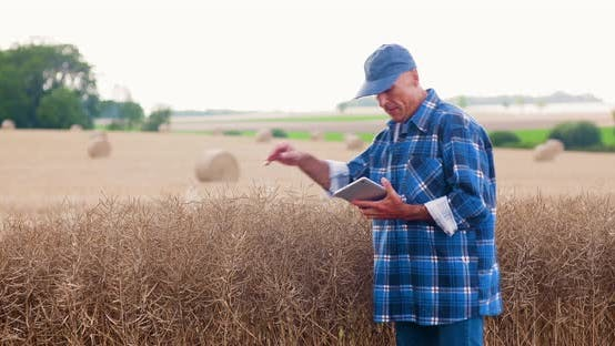 Thumbnail for Farmer with Digital Tablet Analyzing Crops at Farm