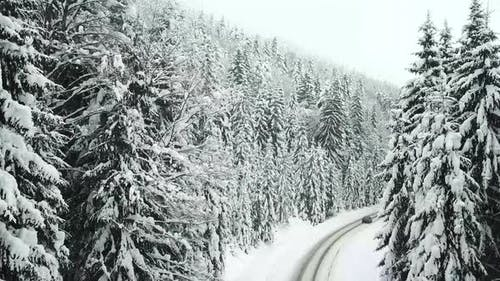 Winter beautiful scenery landscape with snowy forest road, from a drone.