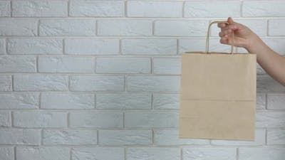 Woman Hand with Paper Bag