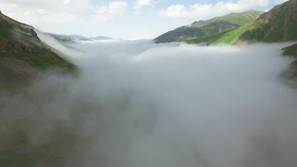 Thumbnail for Cloud Covering the Bottom of the Valley