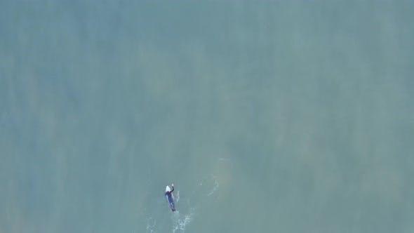 Aerial surfer