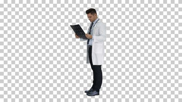Thumbnail for Neurosurgeon observing MRI scan examining progress of disease,