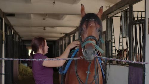 Placing the Saddle on the Horse