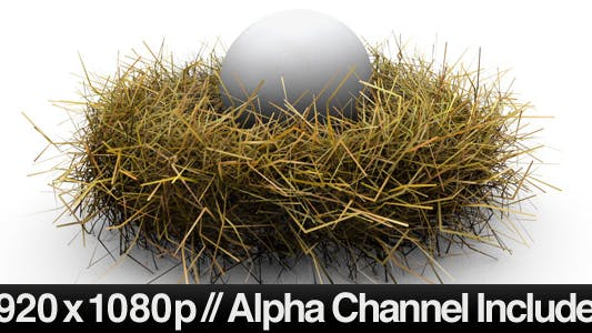 Thumbnail for Nest Egg Concept With Alpha Channel