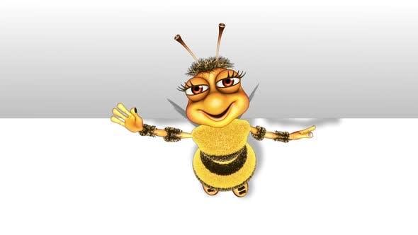 Cartoon Bee 3D Promo  Looped on White