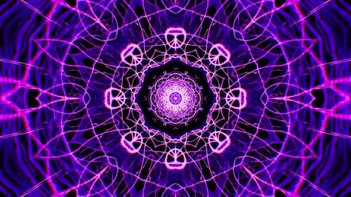Abstract Fractal Organic Purple Line Shapes Background 4K Loop