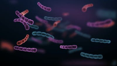 Antibiotic Resistant Bacteria Illness Infection and Inflammation