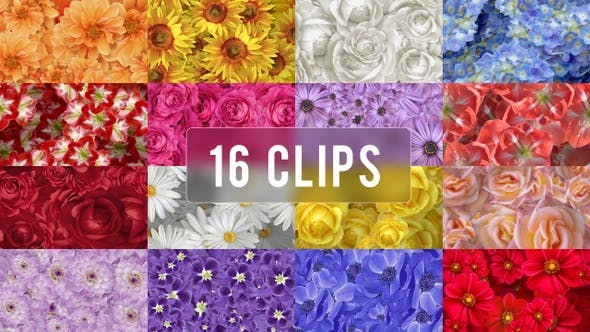 Floating Flowers Background - 16 Clips