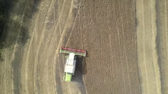 Thumbnail for Vertical View Flycam Follows Harvester Gathering Wheat