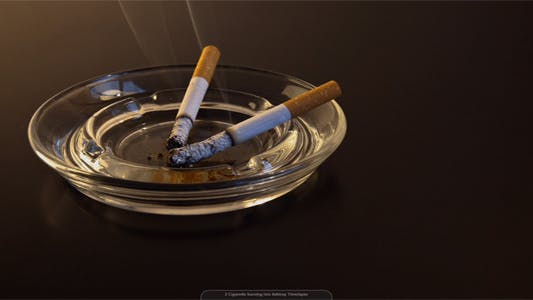 Thumbnail for 2 Cigarette Burning Into Ashtray Time Lapse Pack