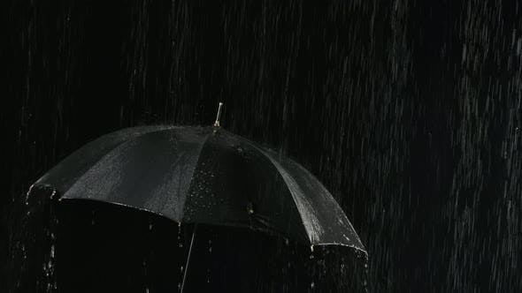 Thumbnail for An Open Black Umbrella in the Rain Through Which Streams of Water Flow Down. Filmed Close Up in a