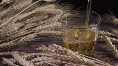 Whisky and Barley. Whisky Is Pouring Into a Glass