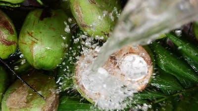 Water splashing on fresh coconuts