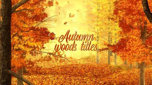 Autumn Woods Titles