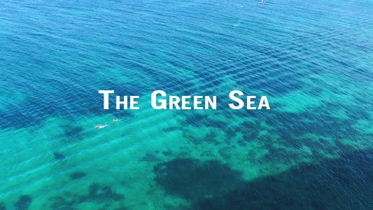 Thumbnail for The Green Sea