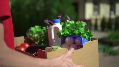Food Delivery Courier Carry Charity Box with Grocery Vegetables