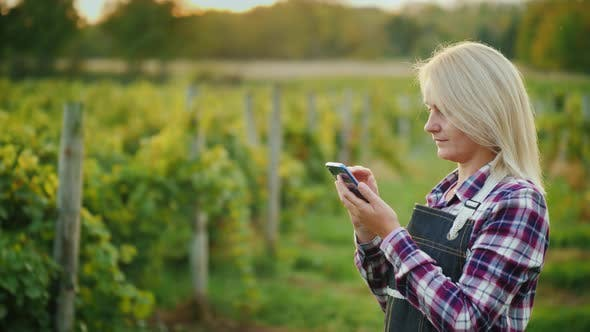 Thumbnail for A Woman Farmer Uses a Smartphone on the Background of His Vineyard