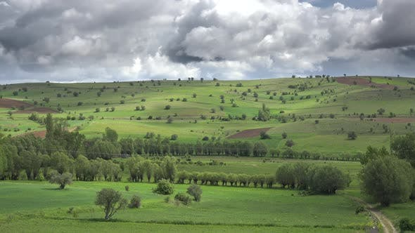 Thumbnail for Small Fields With Trees and Low Green Hills in Moorland
