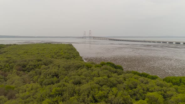Thumbnail for Suspension Cable Bridge in Surabaya