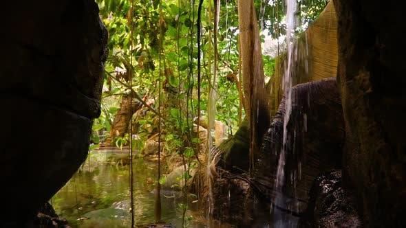 Thumbnail for Natural Park