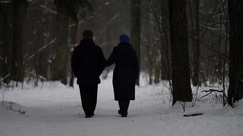 Old Married Couple Is Walking in Park at Winterrear View of Figures of Elderly People Going Hand in