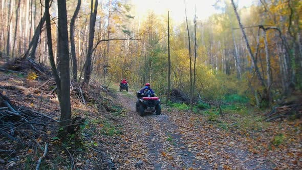 Thumbnail for People Riding ATVs in the Forest on the Track - Autumn Season