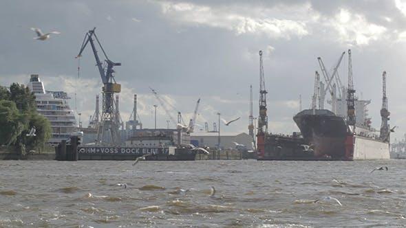 Thumbnail for Hamburg Port Cargo Ship, Gulls