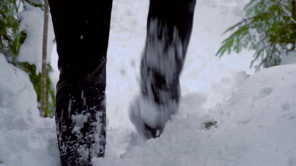 Thumbnail for Male Feet Walking Through the Snow in Winter Forest