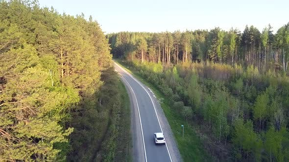 Thumbnail for Aerial View Car Passes By Young Forest Planted Along Road