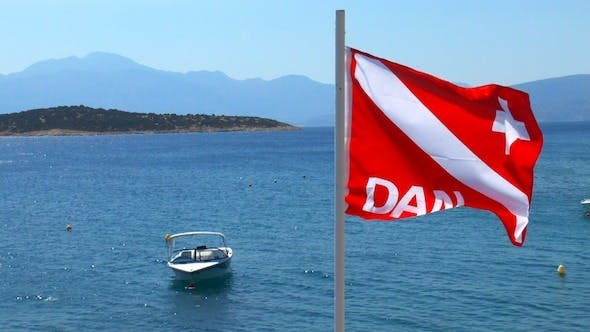 Thumbnail for Divers Alert Network (DAN) Flag Waving