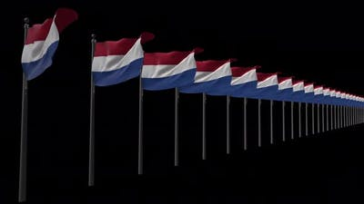 Row Of Netherlands Flags With Alpha 4K