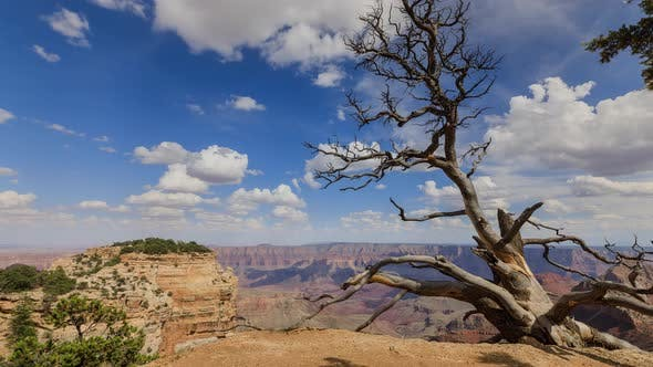 Time Lapse At The North Rim Of The Grand Canyon