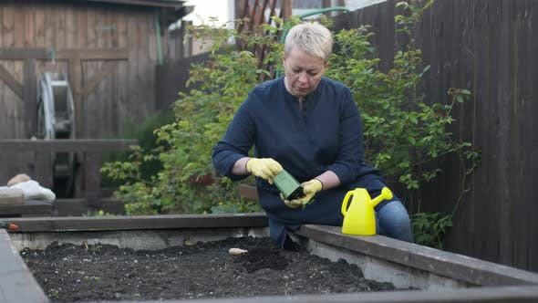 Thumbnail for Beautiful Female Gardener Replanting Young Pepper Plant From Pot To Garden Soil