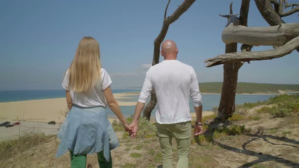 Thumbnail for Rear View of Couple Holding Hands and Walking at Seaside