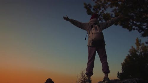 Stood Triumphantly On Cliff At Sunset