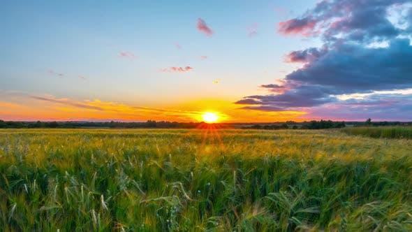 Thumbnail for Sunset Land