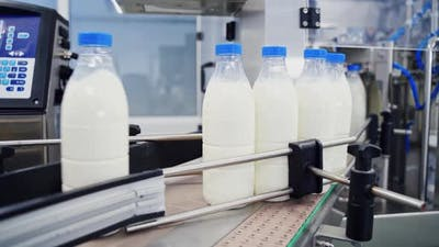 Milk production at factory. Milk production on line at the factory