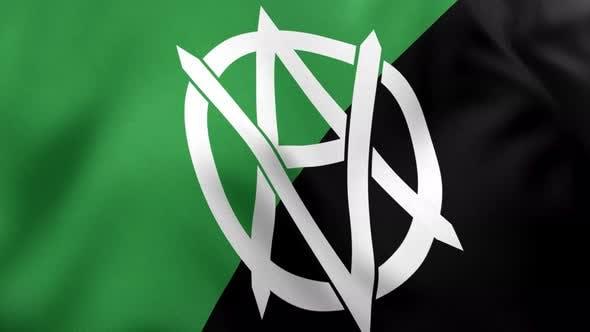 Veganarchism Flag - 4K