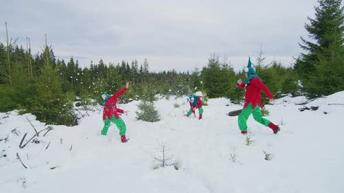 Elves playing in the snow