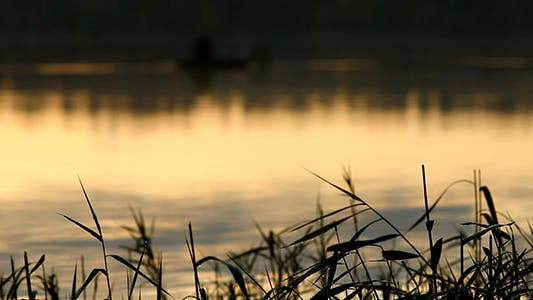 Thumbnail for Morning Dew On Grass And Lake