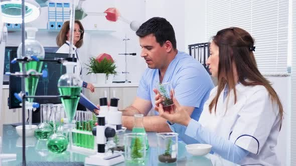 Thumbnail for Researcher in Biology Field Talking with an Intern