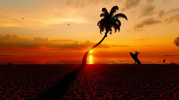 Sea Sunset View and Beach Surfer